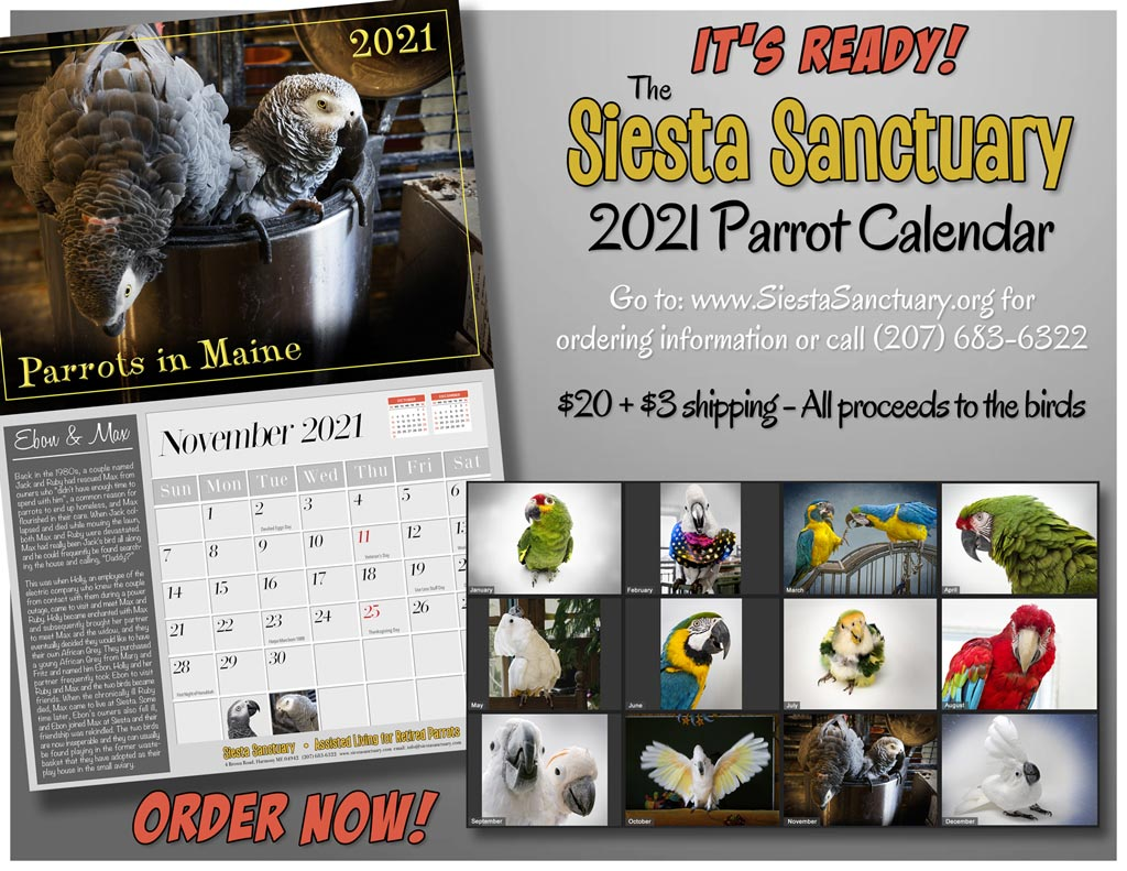 2021 Calender - Click Here