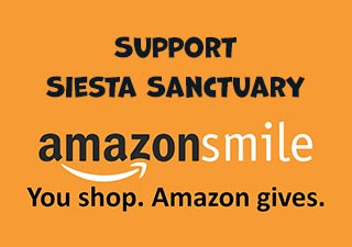 Support Siesta Sanctuary - Shop Using Amazon Smile